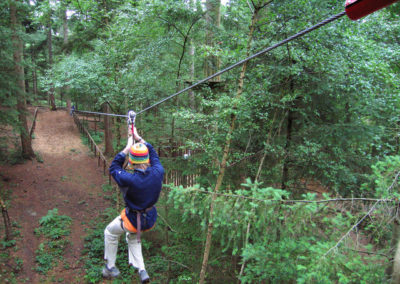 Wyre Forest Go Ape